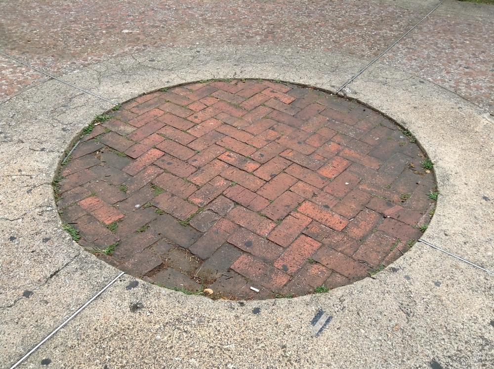 Sewer Repair In Snohomish