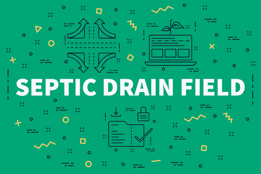 Trustworthy, Affordable Drain Field Repair In Everett